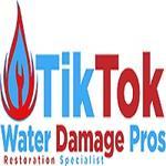 Tik Tok Water Damage Pros profile image