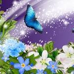 sara84 profile image