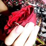 deiia2 profile image
