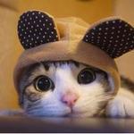 Yumi profile image