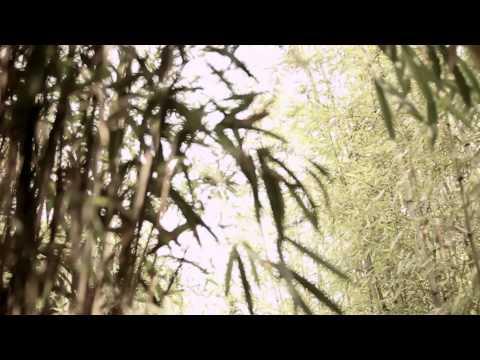 Heo Young Saeng: Rainy Heart (Featuring Kim Jyu Jong)
