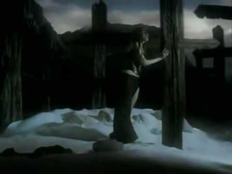Evanescence: Toruniquet