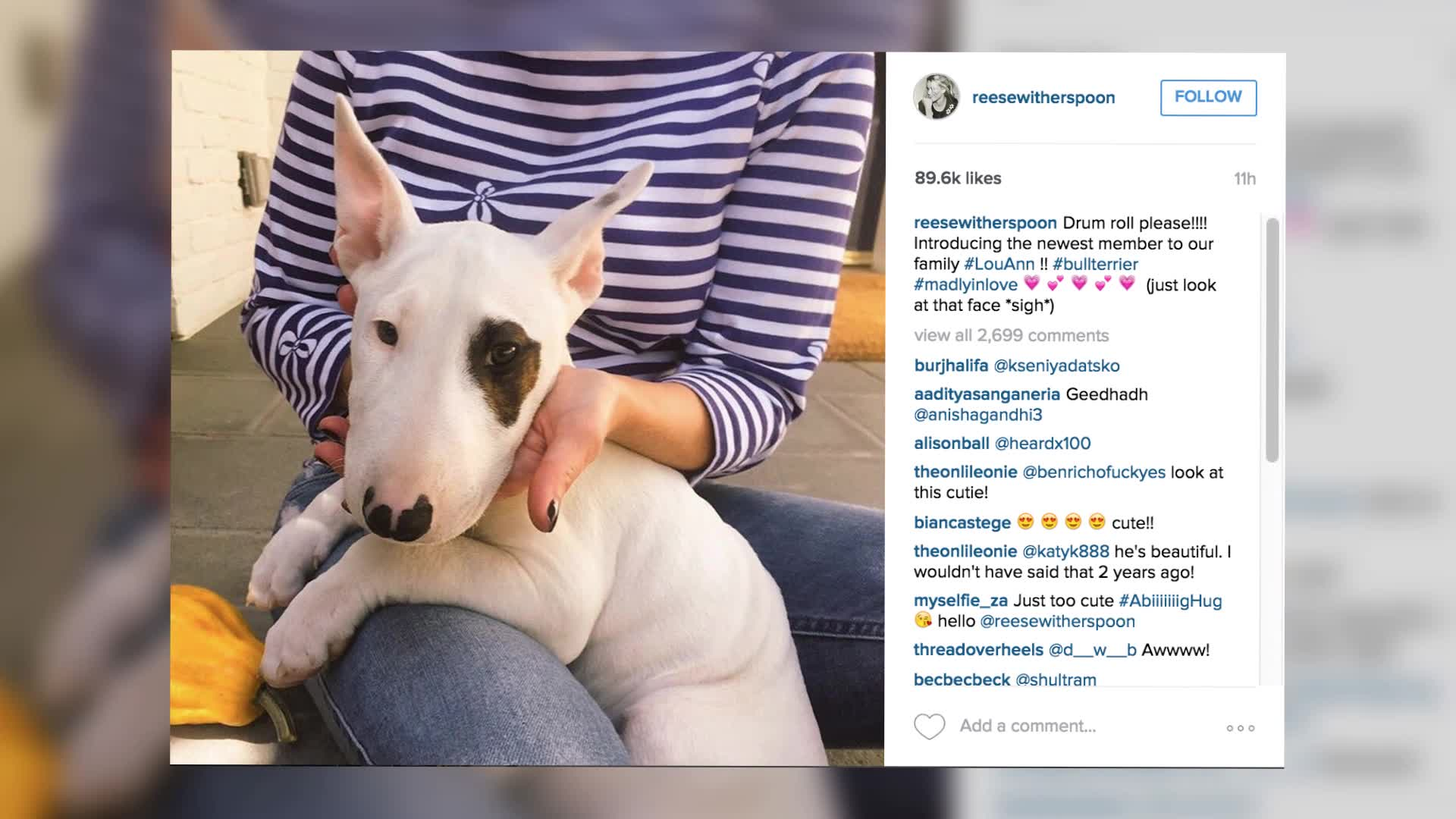 Ruth Witherspoon Reveals Her New Cute Puppy