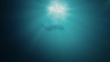 Trailer 2: The Starry Night, The Starry Sea Season 2